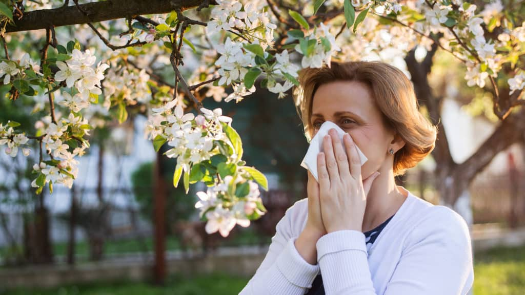 Pollens And Allergens: During The Times Of Covid