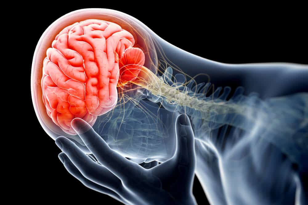 Traumatic Brain Injury And Alzheimer's Disease Have The Same Effect On Brain Cells